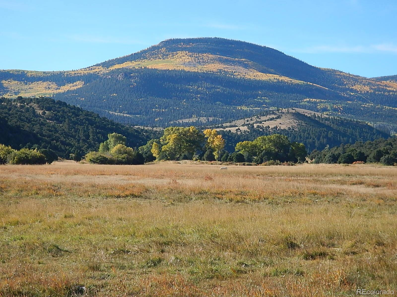 00 Highway 160, South Fork CO 81154 - Photo 1