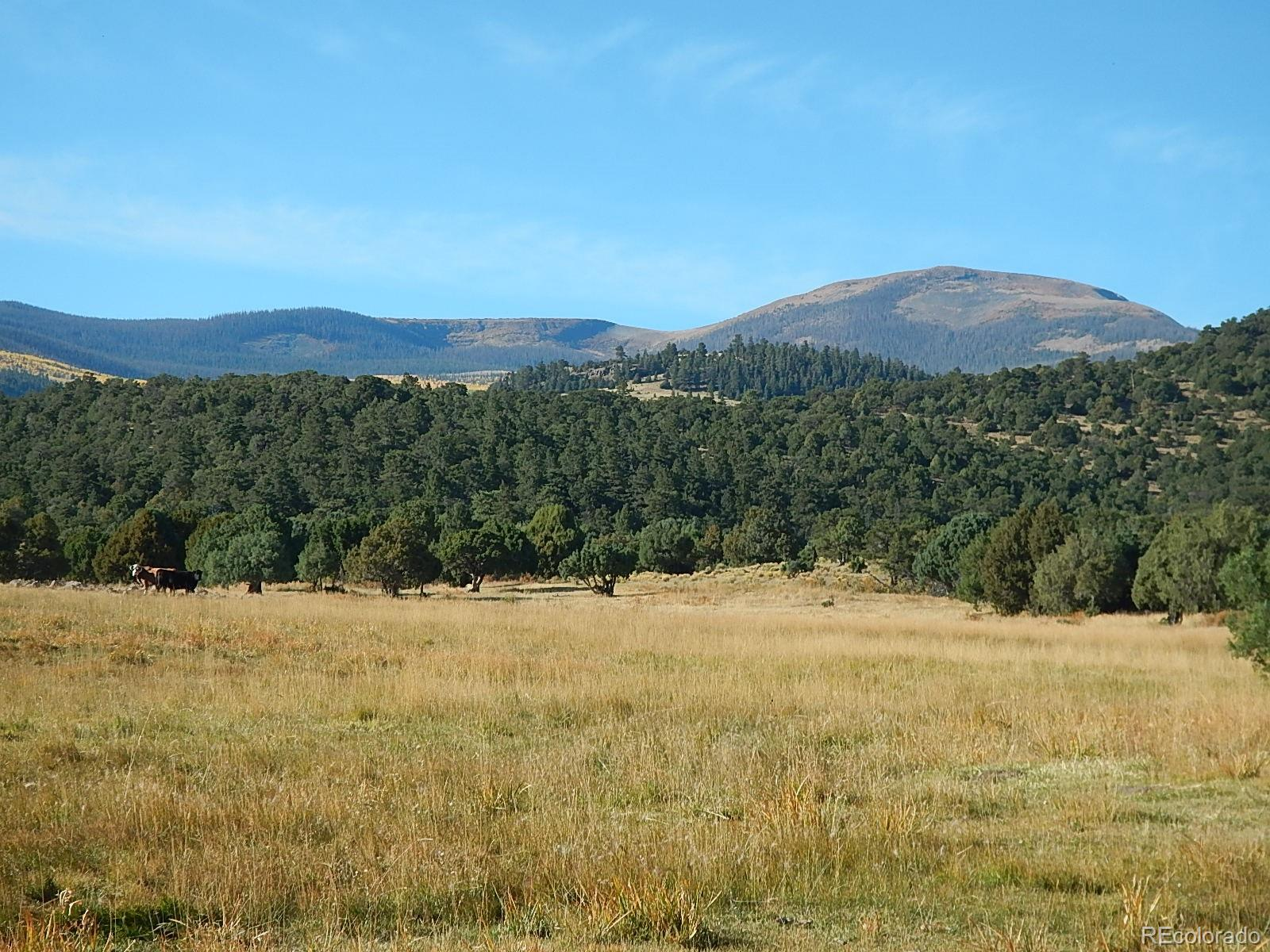 00 Highway 160, South Fork CO 81154 - Photo 2