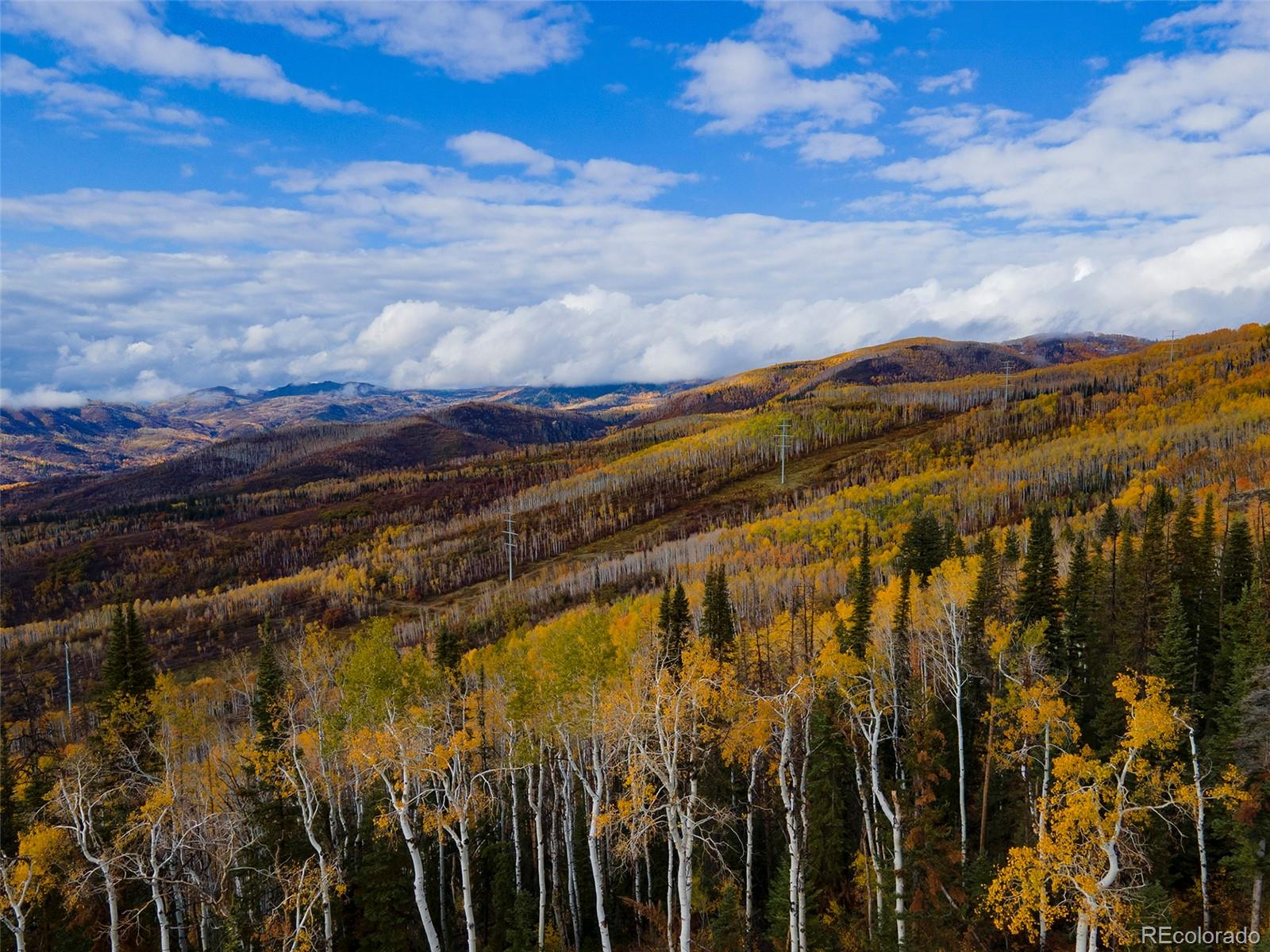 550 Huckleberry Lane, Steamboat Springs CO 80487 - Photo 2