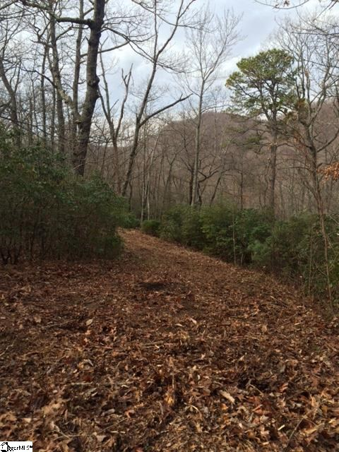 Panther Mountain Road, Travelers Rest SC 29690