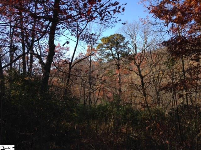Panther Mountain Road, Travelers Rest SC 29690 - Photo 2