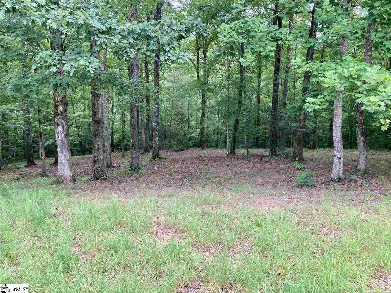 601 Tree Haven Trail, Marietta SC 29661 - Photo 1