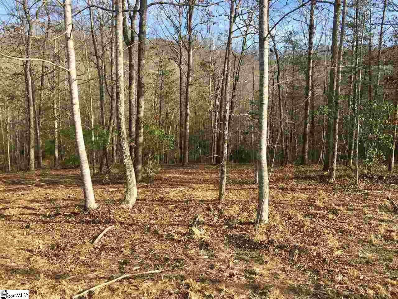 601 Tree Haven Trail, Marietta SC 29661 - Photo 2