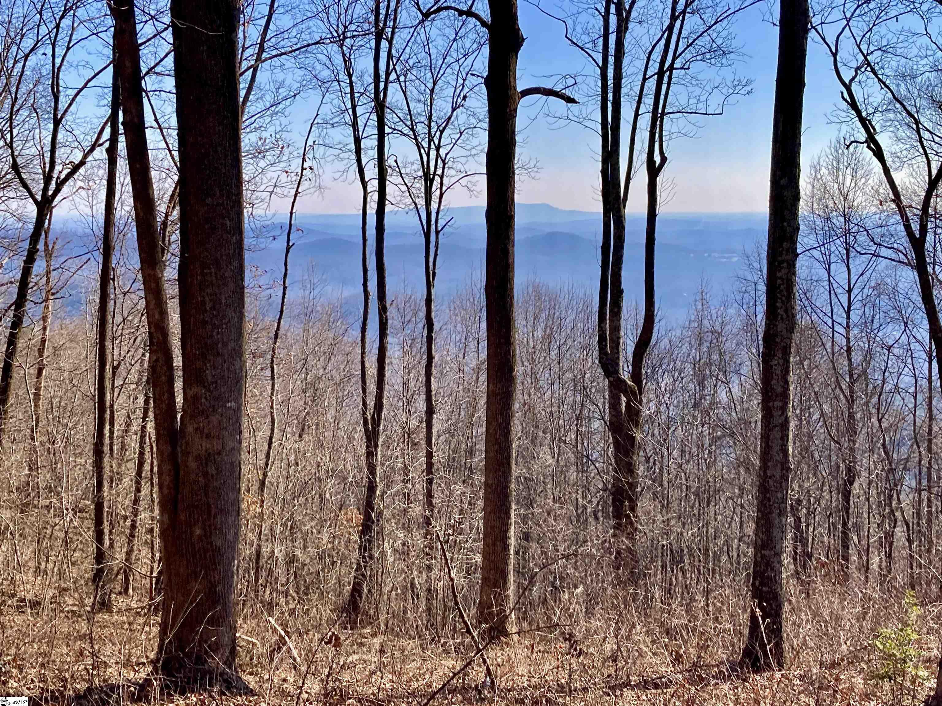 1000 Mountain Summit Road, Travelers Rest SC 29690 - Photo 2