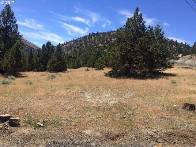 Adam Rd, Canyon City OR 97820 - Photo 2
