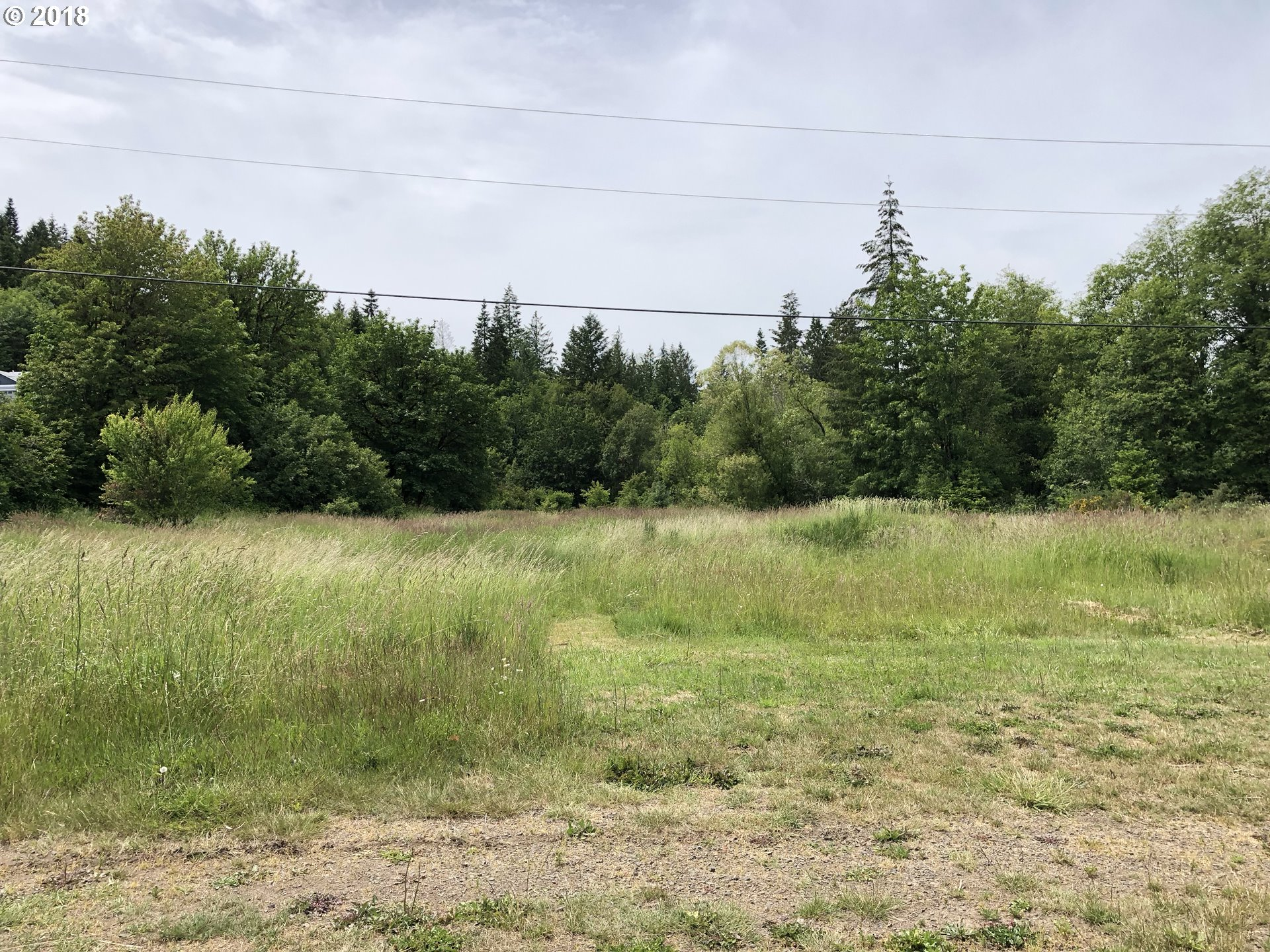 Cougar St, Vernonia OR 97064 - Photo 1