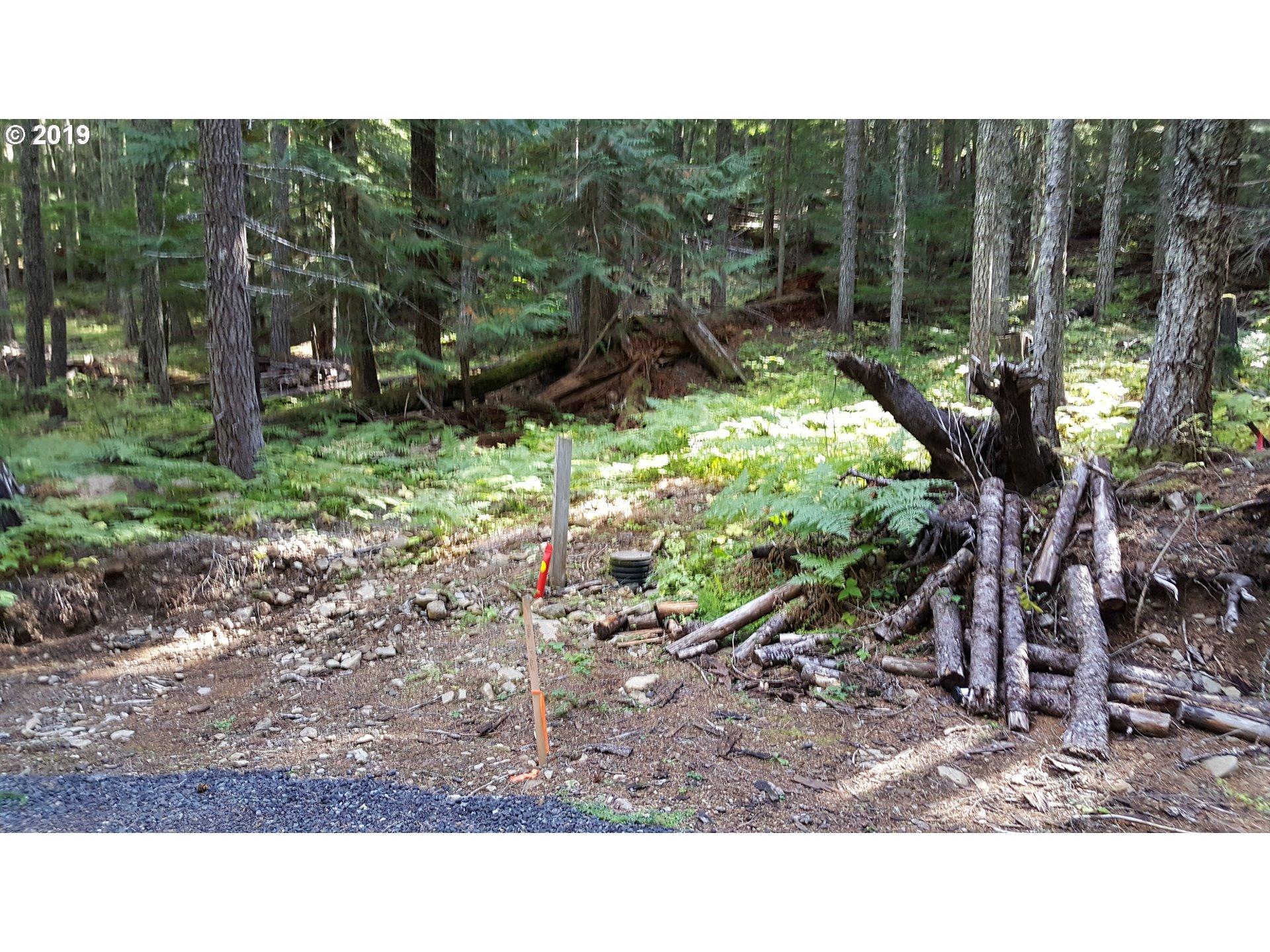 37058 E Gomes Ln, Government Camp OR 97028 - Photo 2
