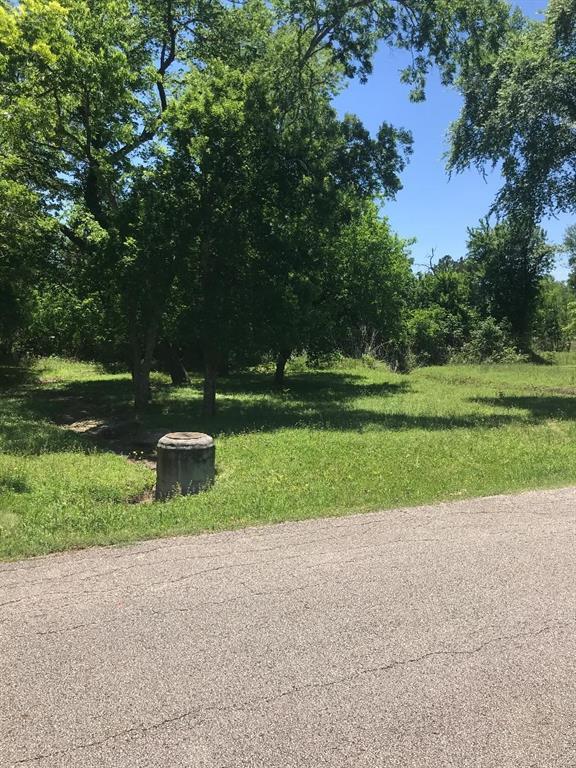 10507 Twin Circle, Montgomery TX 77356 - Photo 2