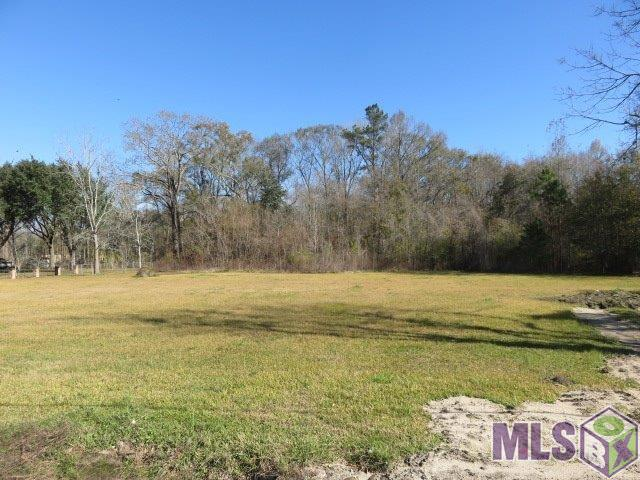 Lot W-2 Airline Hwy, Prairieville LA 70769 - Photo 1