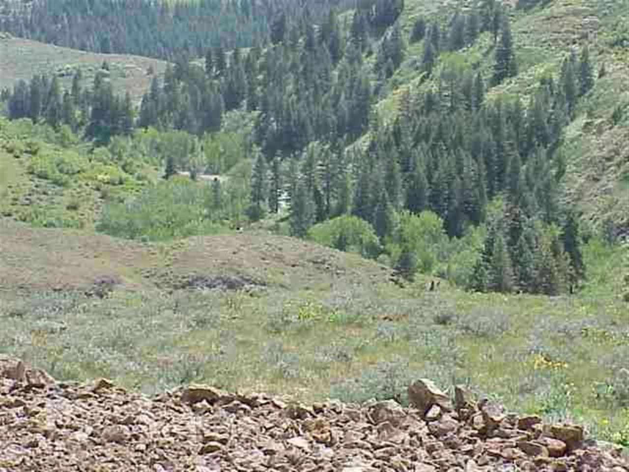 Lot 4 Middle Fork Rd, Council ID 83612 - Photo 1