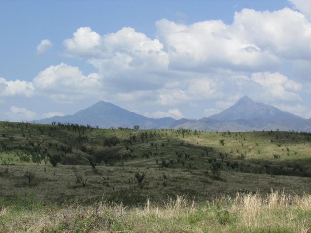 50 Lado De Loma, Patagonia AZ 85624 - Photo 2