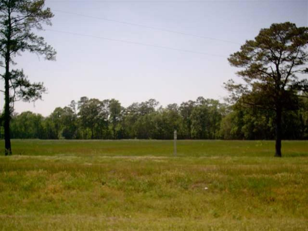 11341 Fla-ga Highway, Havana FL 32333 - Photo 1