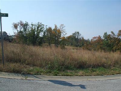 1009 Thorntree, Lawrenceburg KY 40342