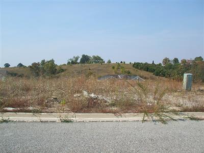 163 Thorntree, Lawrenceburg KY 40342