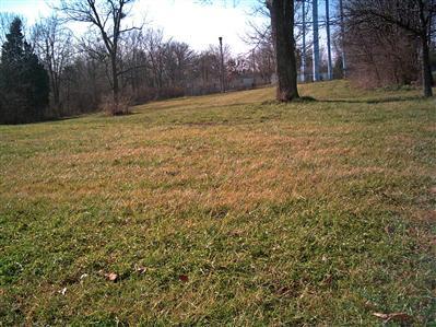 43 Magnolia Avenue, Millersburg KY 40348 - Photo 1