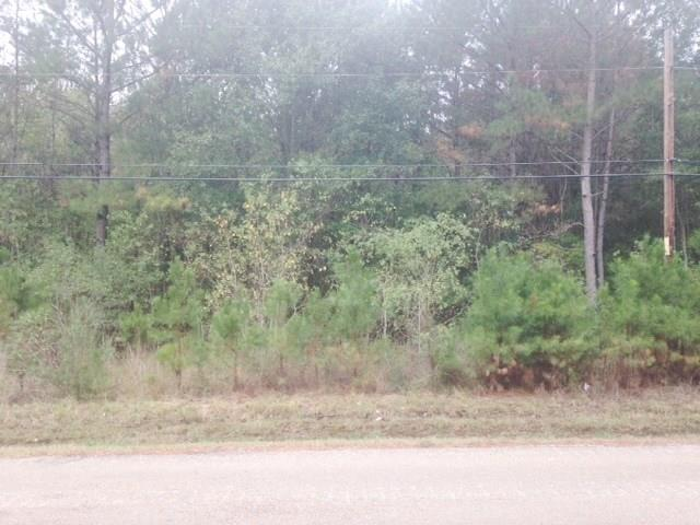 48363 Hwy 1065 Highway, Hammond LA 70403 - Photo 1