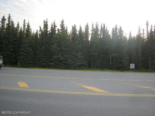 301 Bridge Access Road, Kenai AK 99611 - Photo 2