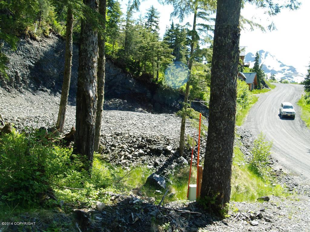 103 Cabin Ridge Road, Cordova AK 99574