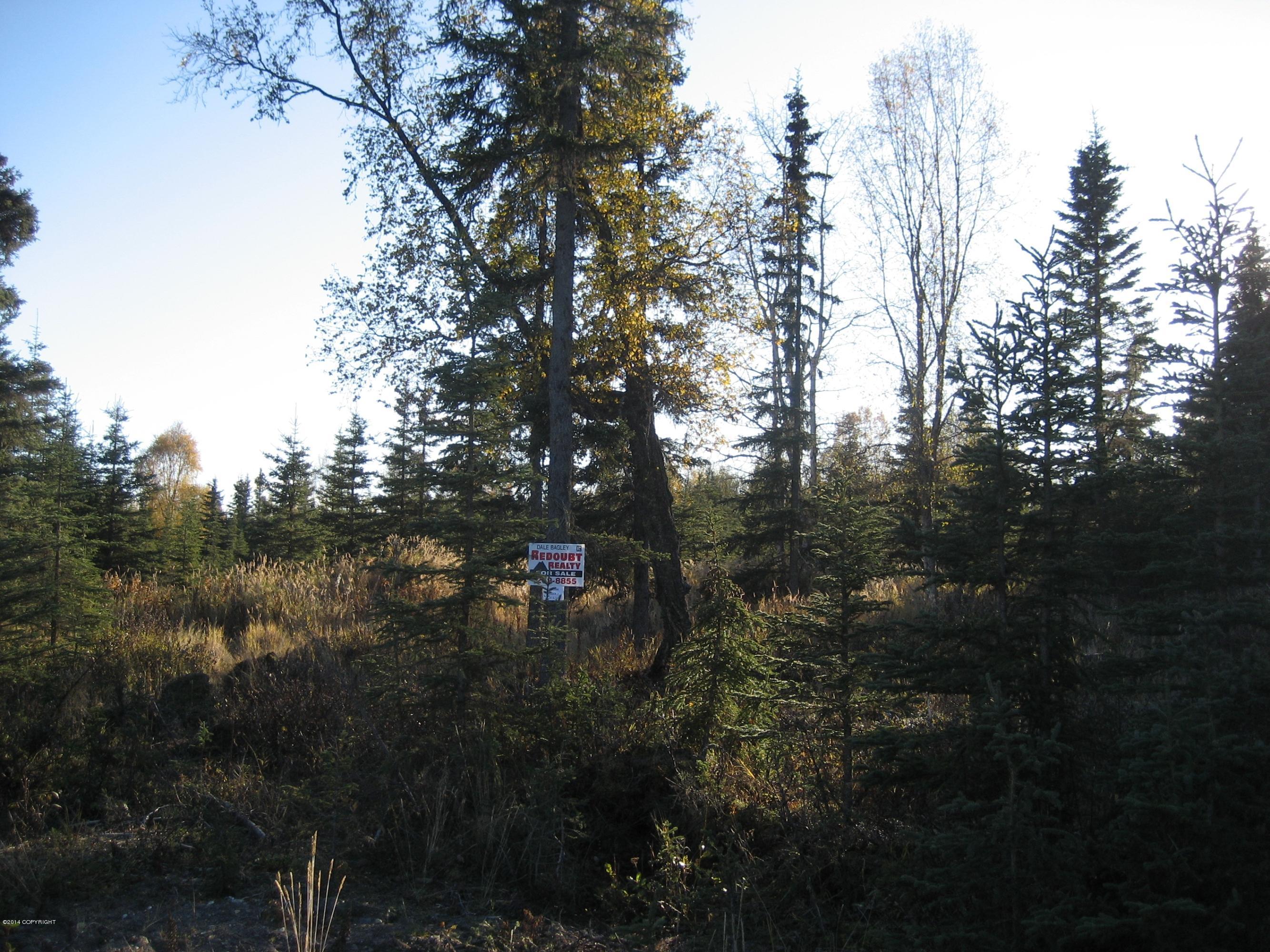 L10a B2 Bruin Circle, Kasilof AK 99610 - Photo 1