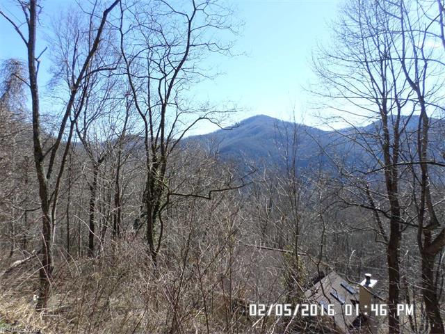 Lot 23 Deer Creek Trail, Maggie Valley NC 28751 - Photo 1