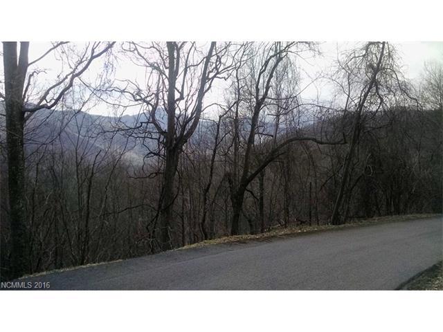 Lot 23 Deer Creek Trail, Maggie Valley NC 28751 - Photo 2
