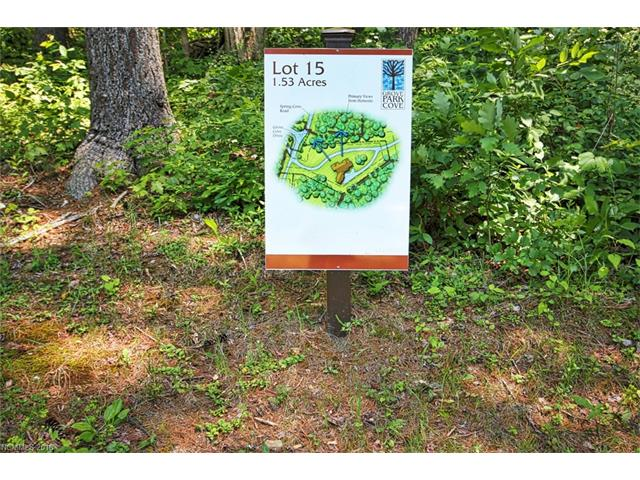 42 Spring Cove Road # Lot 15, Asheville NC 28804 - Photo 1