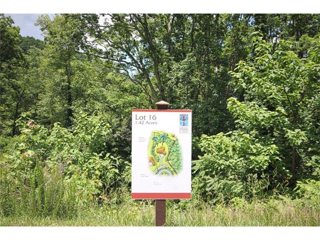 68 Wolfebridge Lane # Lot 16, Asheville NC 28804 - Photo 1