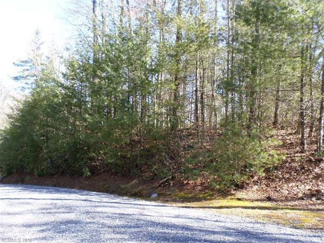 Lot 108 Dream Forest Trail, Waynesville NC 28785 - Photo 1
