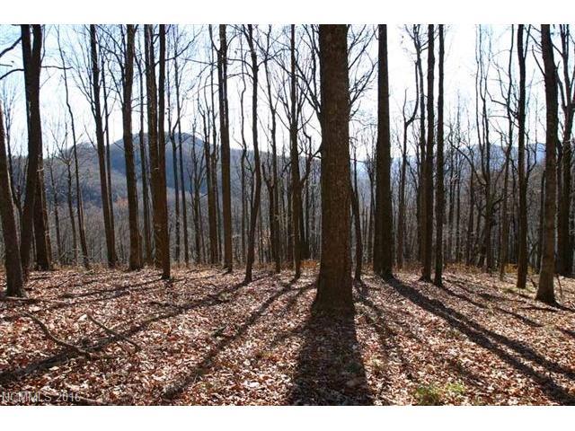 48 Timbercliff Trail # 10, Black Mountain NC 28711 - Photo 1