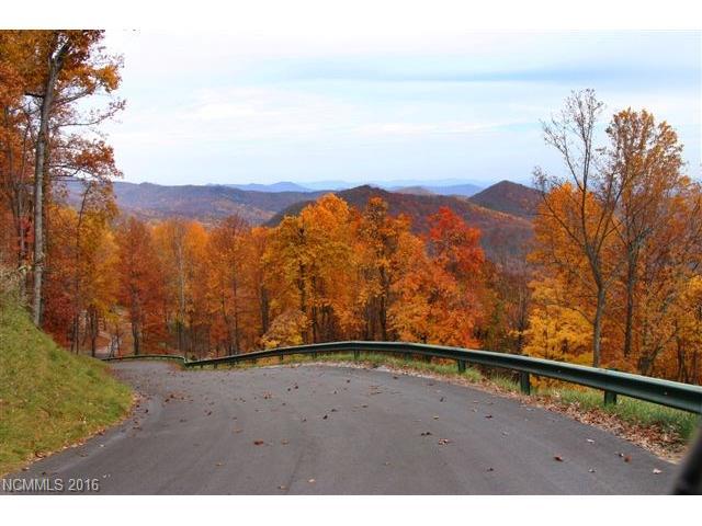 48 Timbercliff Trail # 10, Black Mountain NC 28711 - Photo 2