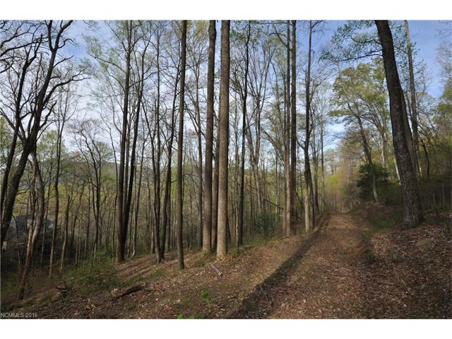 841 Blackthorne Lane # Lot 33, Arden NC 28704
