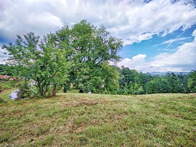 35 Magnolia Farms Drive # 5, Asheville NC 28806 - Photo 1