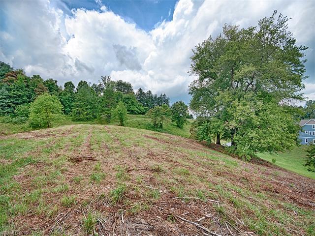 35 Magnolia Farms Drive # 5, Asheville NC 28806 - Photo 2
