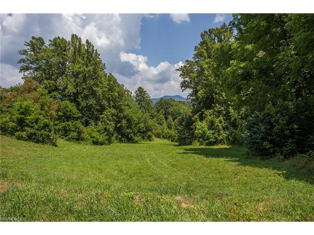 0 S Lindon Cove Road # 1, Candler NC 28715 - Photo 2