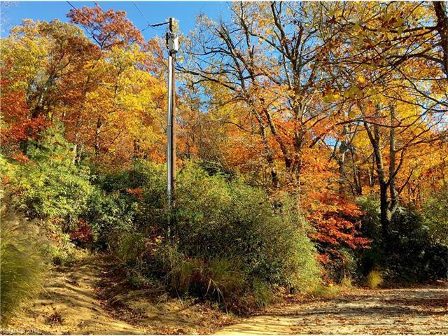 99999 Shumont Road # 14,35,36, Black Mountain NC 28711 - Photo 2