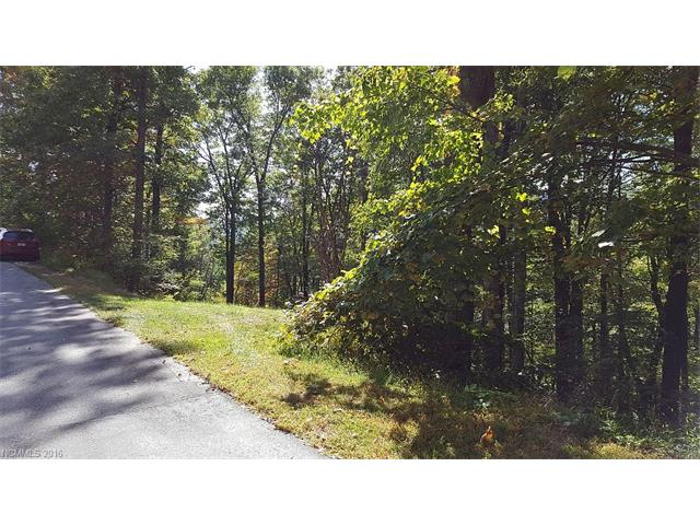 Lot H-16 426 Warbler Lane # H-16, Black Mountain NC 28711 - Photo 2