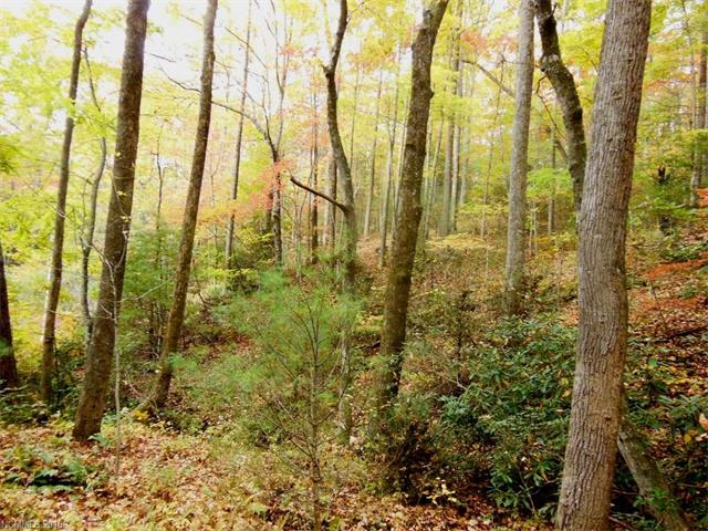 8 Rock Cave Road, Black Mountain NC 28711 - Photo 2