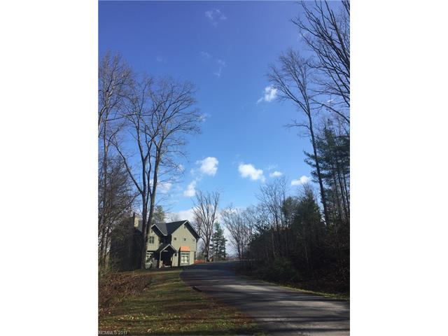 55 Wind Stone Drive # 54, Woodfin NC 28804 - Photo 2