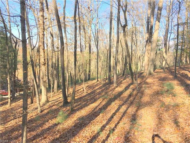 30 Dividing Ridge Trail # 4, Arden NC 28704 - Photo 1