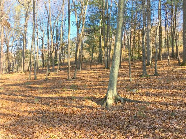 30 Dividing Ridge Trail # 4, Arden NC 28704 - Photo 2
