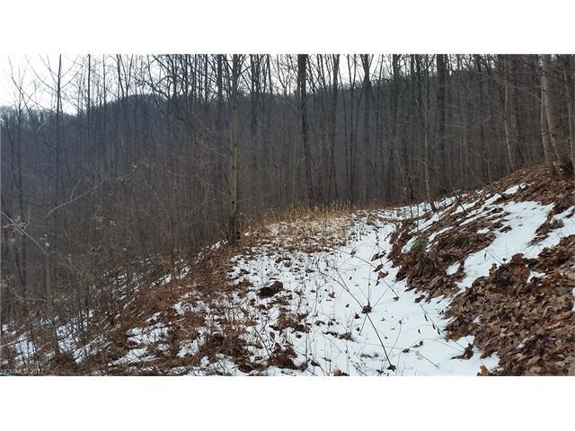 Tbd Verbena Drive # Cc13, Black Mountain NC 28711 - Photo 2