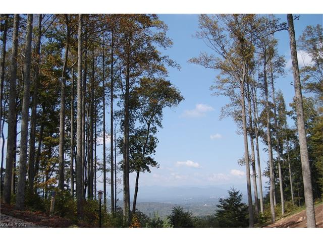 74 Winding Ridge Road # 3, Fairview NC 28730