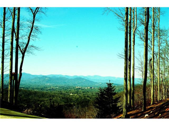 99999 Winding Ridge Road # 1, Fairview NC 28730