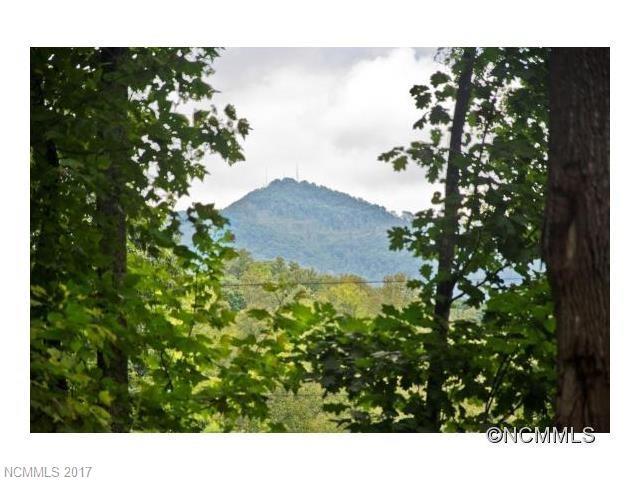 89 Pine Tree Drive, Candler NC 28715 - Photo 1