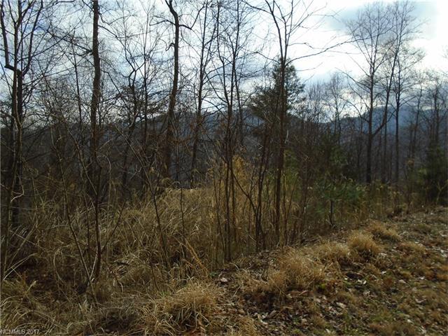 38 Green Ridge Road # 79 & 80, Barnardsville NC 28709 - Photo 1