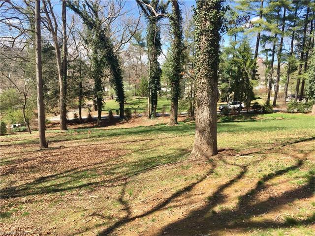 99999 Grindstaff Drive # Lot 2, Asheville NC 28803 - Photo 2
