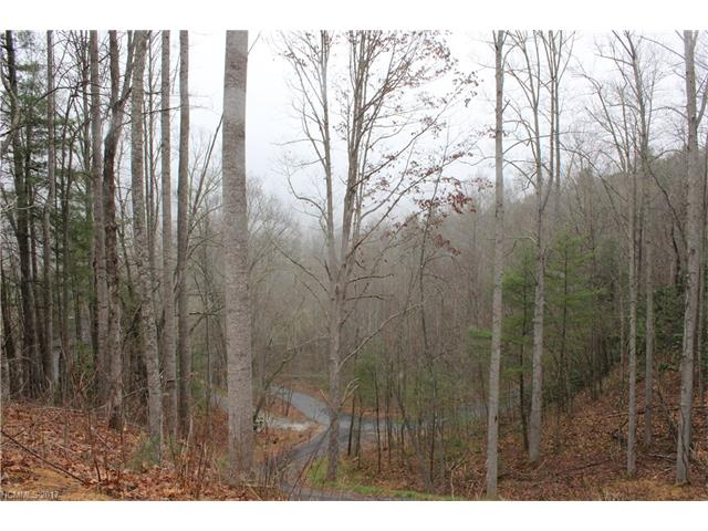 16 Hilltop View Estate, Fletcher NC 28732 - Photo 2
