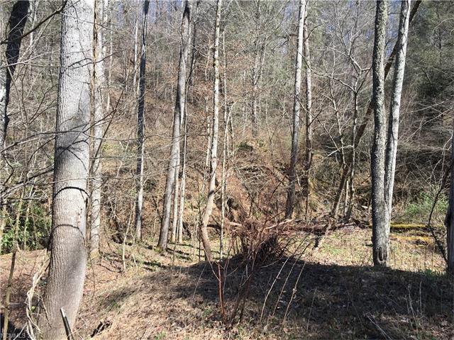 99999 Casual Corner Lane, Hendersonville NC 28792 - Photo 1