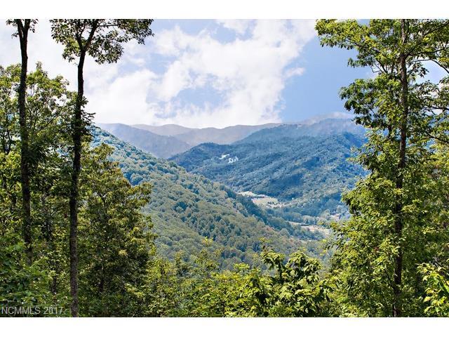 581 Tsalagi Trail # G2, Maggie Valley NC 28751 - Photo 2