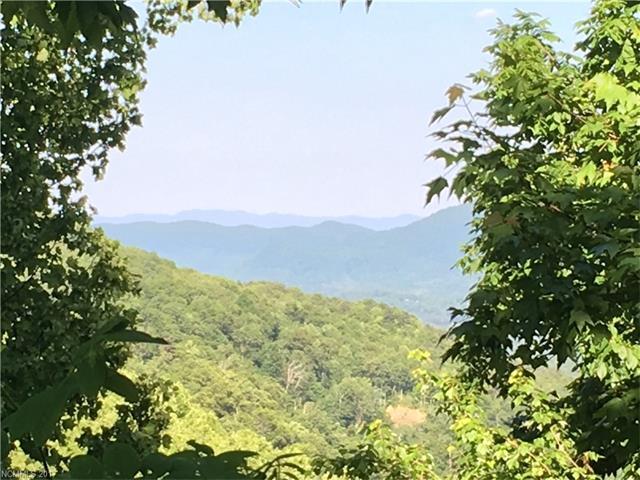 28 Berry Lane # C-11, Black Mountain NC 28711 - Photo 1